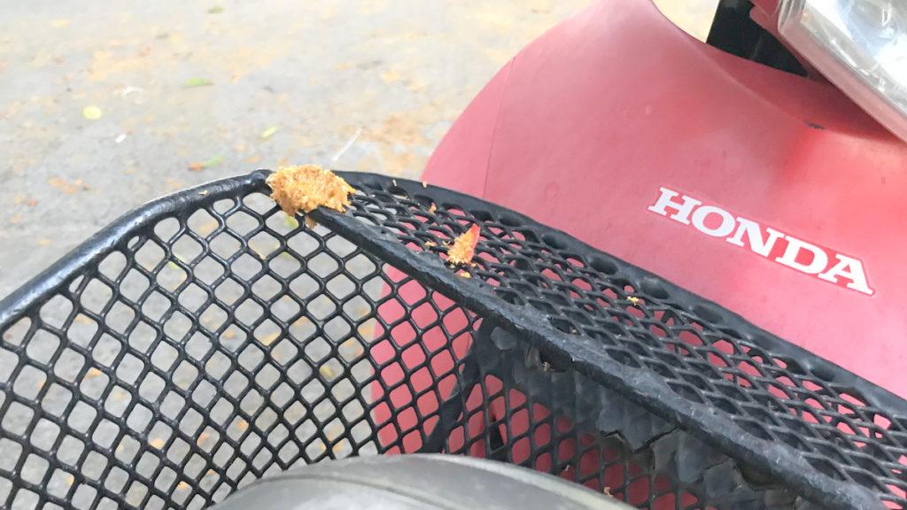 ホンダのバイクに鳥の糞