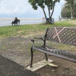 サパンヒン公園のベンチ