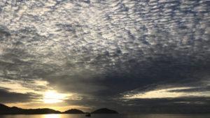 綺麗なイワシ雲