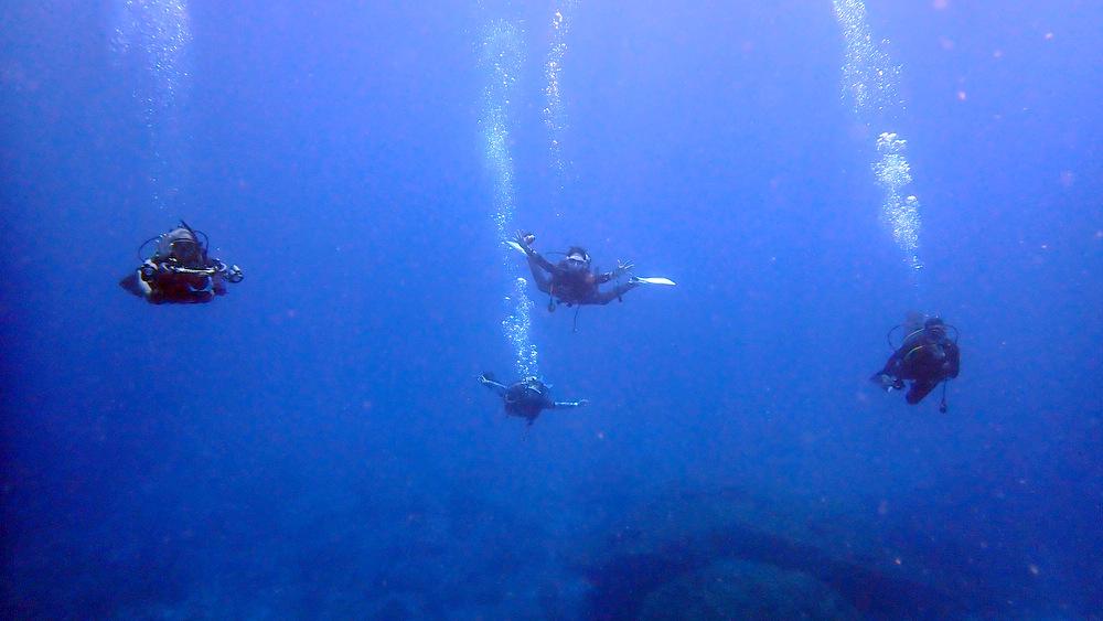 2021/04/11 ボン島の透明度が良い中層